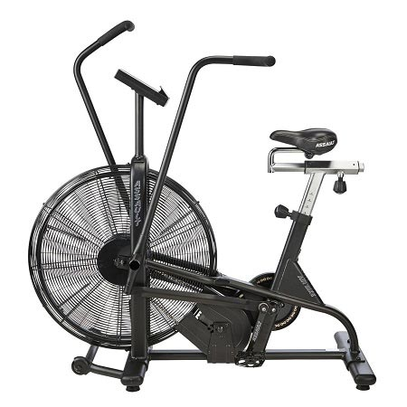 Lifecore Fitness Assault Air Bike